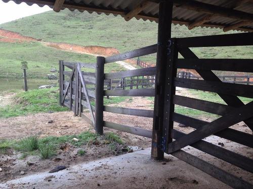 fazenda em centro, são pedro de alcântara/sc de 0m² à venda por r$ 999.000,00 - fa187954
