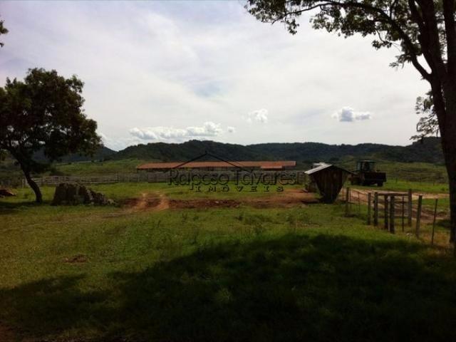 fazenda em echaporã / 1639