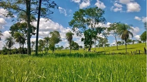 fazenda em formosa - go, p/ pecuária  - 165