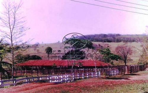 fazenda em ilha solteira