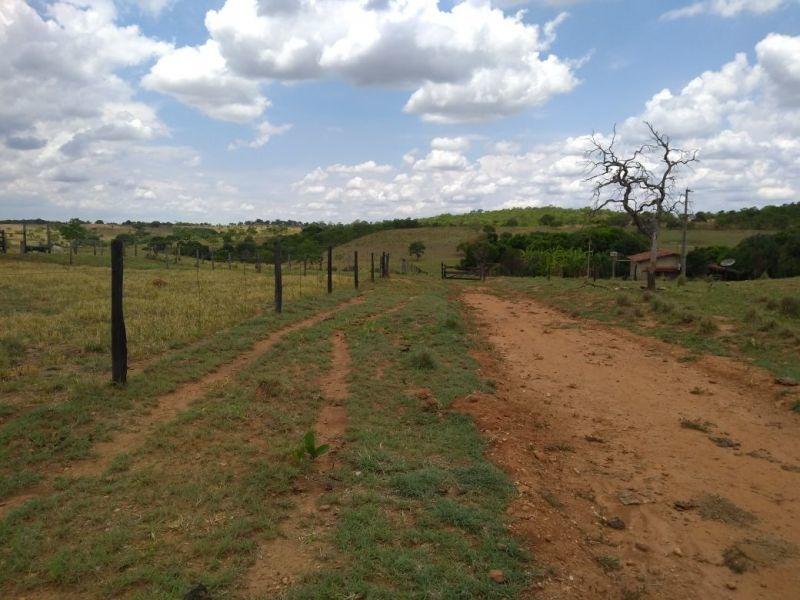 fazenda em jaraguá para gado e grãos - 696