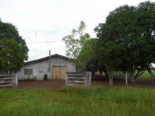 fazenda em marianópolis - to, dupla aptidão   - 434