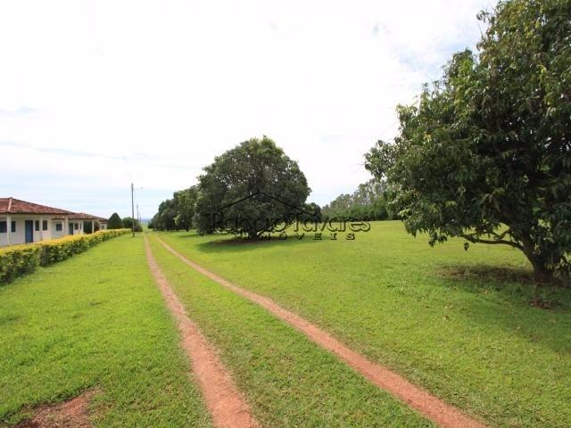 fazenda em presidente prudente / 1651