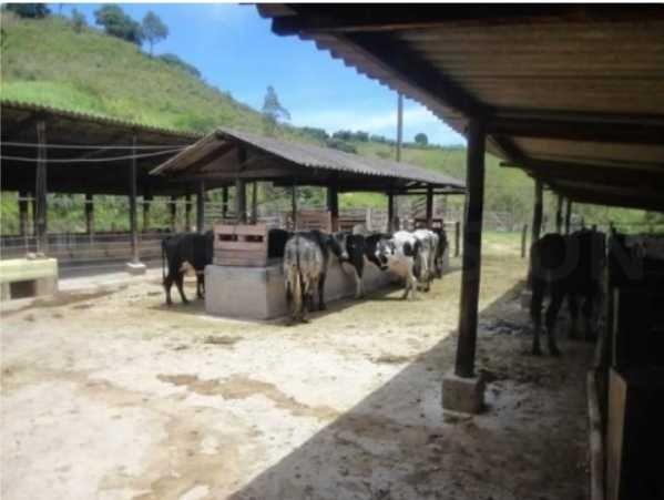 fazenda em serra negra com 31 alqueires - 7503