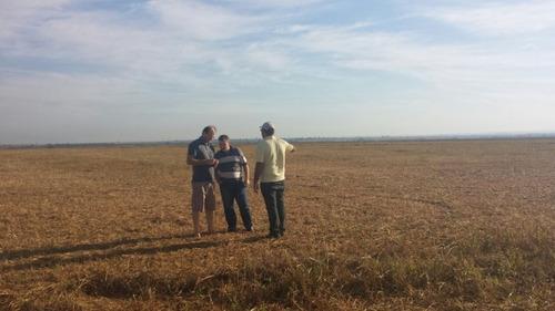 fazenda em são josé do xingu - mt, 2.000 hec de soja  - 225