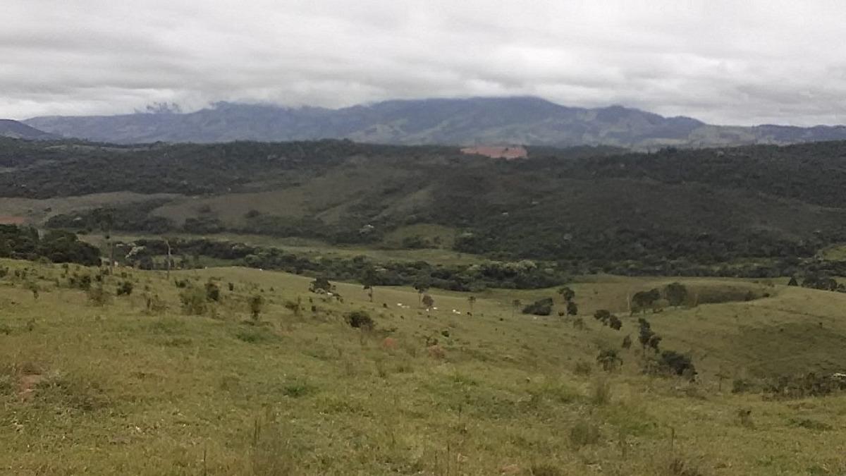 fazenda em são lourenço com 238 hectares muita água . - 485