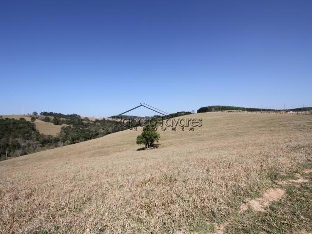fazenda em são miguel arcanjo / 1441