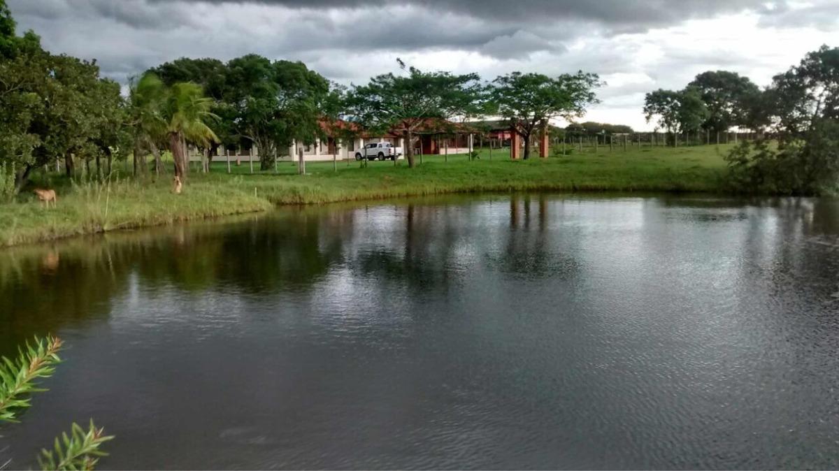 fazenda em três lagoas