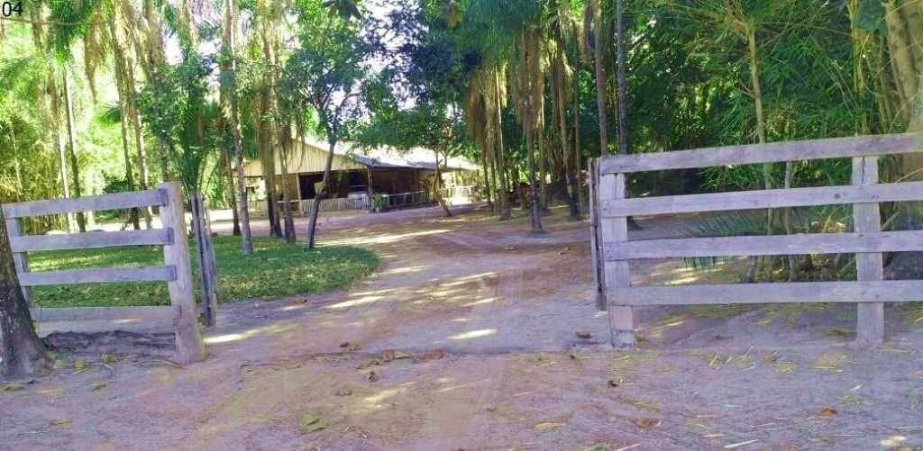 fazenda em vila rica com 244 alqueires - 1064