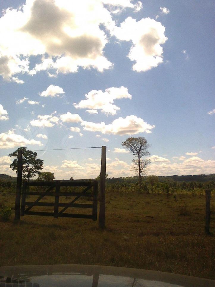 fazenda em wanderlândia - to, p/ soja - 373