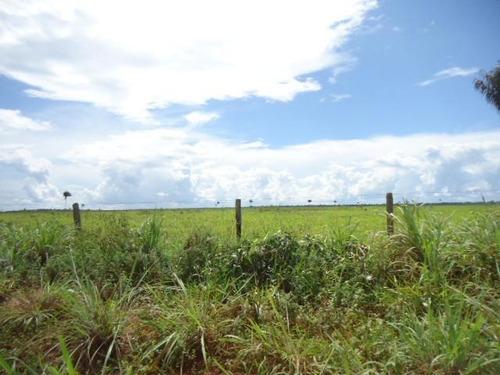 fazenda em xingu - mt, p/ pecuária  - 156