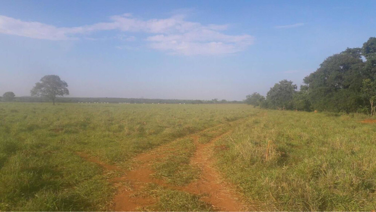 fazenda estado maranhao