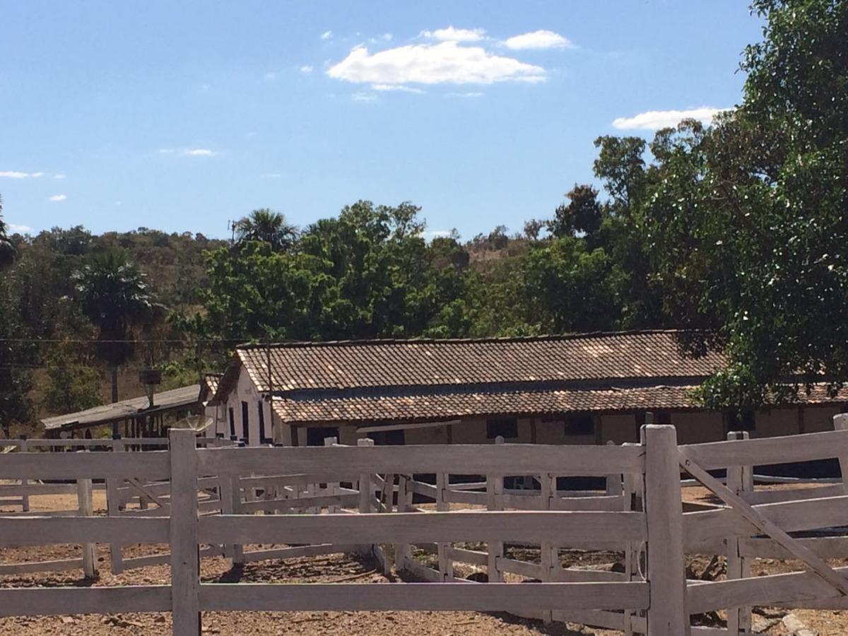 fazenda goias velho - buelandia - go