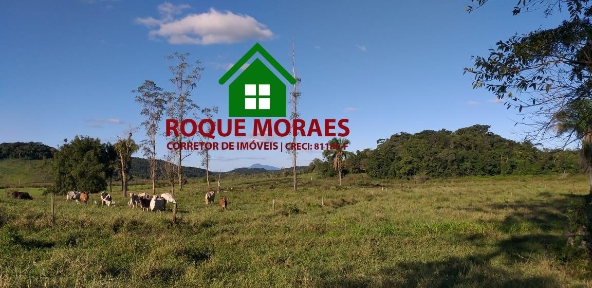 fazenda iguapé- sp - 20 alqueires ref0180