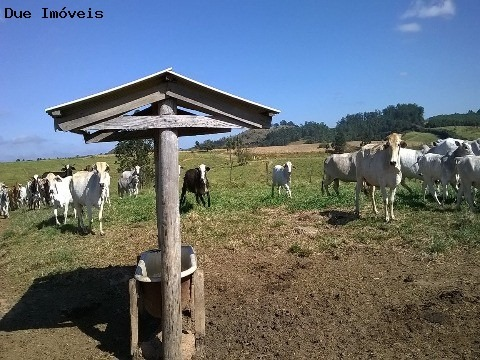 fazenda - itupeva - são paulo - fa00004 - 2564422