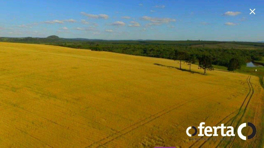 fazenda - lapinha - ref: 198 - v-198