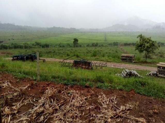 fazenda na região de registro / 1550