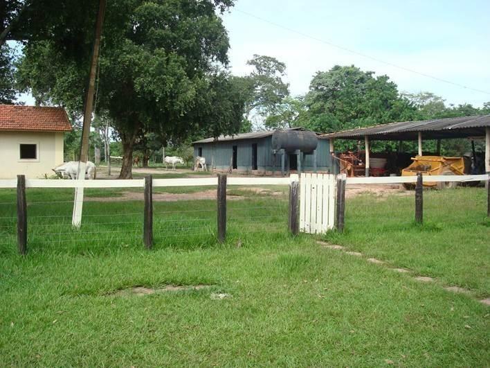 fazenda no mato grosso-coxim - 236