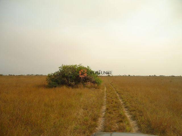fazenda no pantanal - fa0026