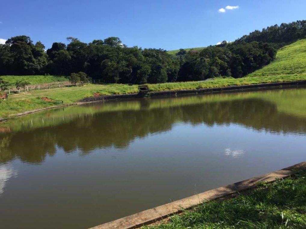 fazenda no paraná - cidade japira-pr - 7700