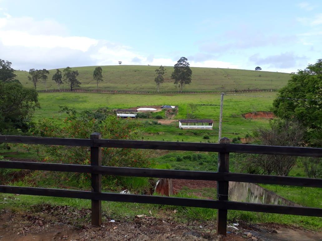 fazenda p/ criador comporta 300 cabeças/ porteira fechada