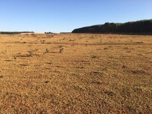 fazenda para arrendamento de plantio de soja  em porangatu - - 1154