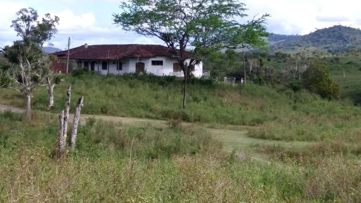 fazenda para comprar no centro em itaju do colônia/ba - 476
