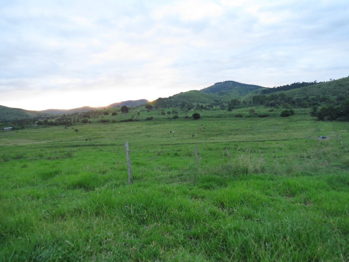 fazenda para comprar no zona rural em gongogi/ba - 462