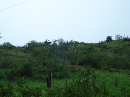 fazenda para pecuária,  chão de cultura - ondulada