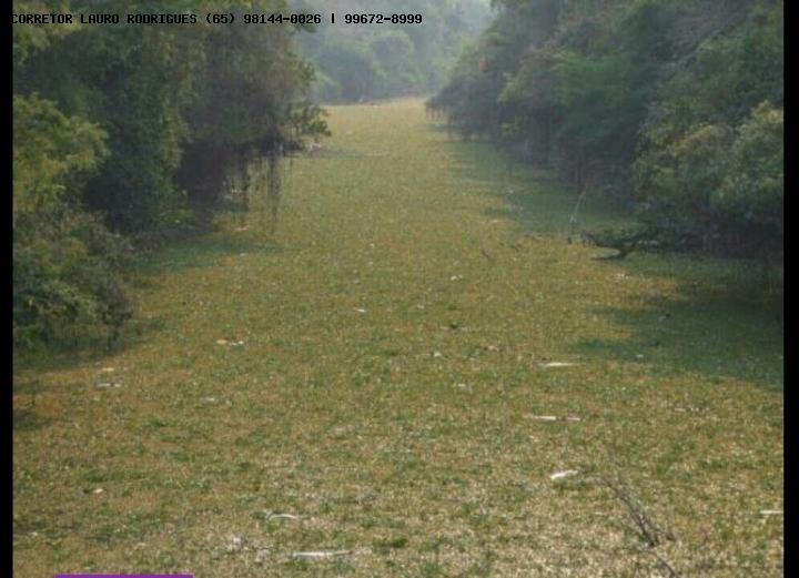 fazenda para venda em barão de melgaço, zona rural - 351725