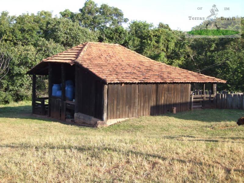 fazenda para venda em coxim - ms