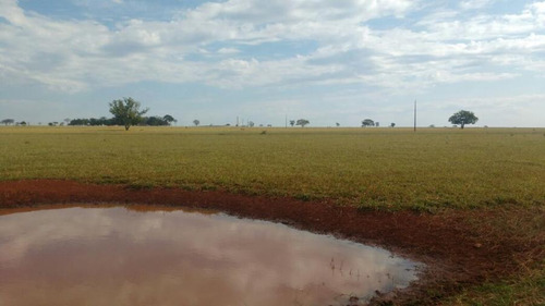 fazenda para venda em laguna carapã, centro - 1085
