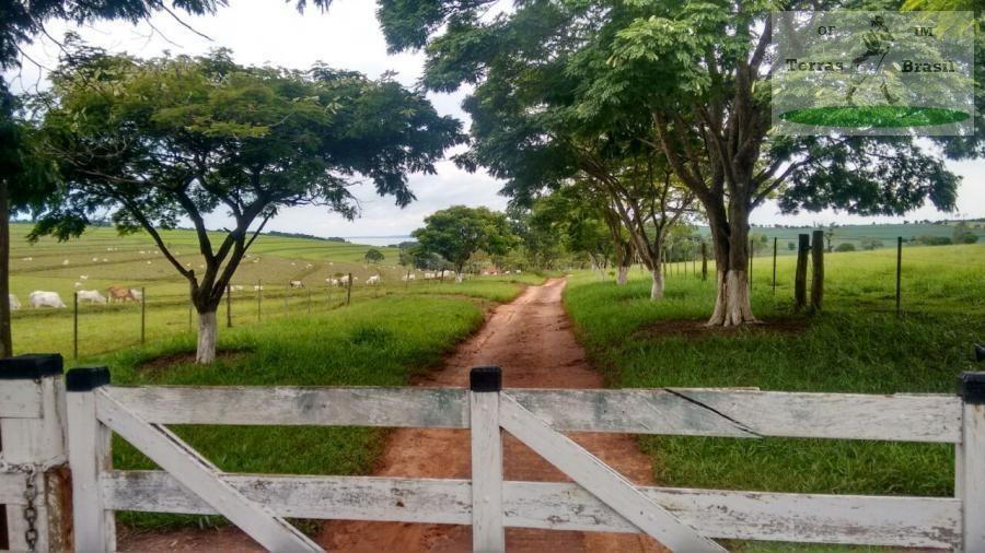 fazenda para venda em piraju, rural -sp