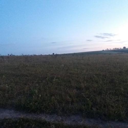 fazenda para venda em pires do rio - 301