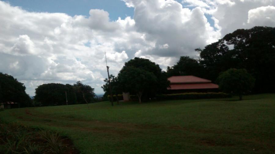 fazenda para venda em ponta porã, centro - 1065