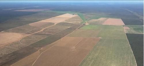 fazenda para venda em são desidério, são desidério faz divisa também com os estados de goiás e tocantins. - 31597