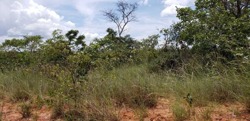 fazenda plana a venda  brasília de minas- mg 482 hectares .aceito 50% ato 50% 1 ano , ou imovel - 7704