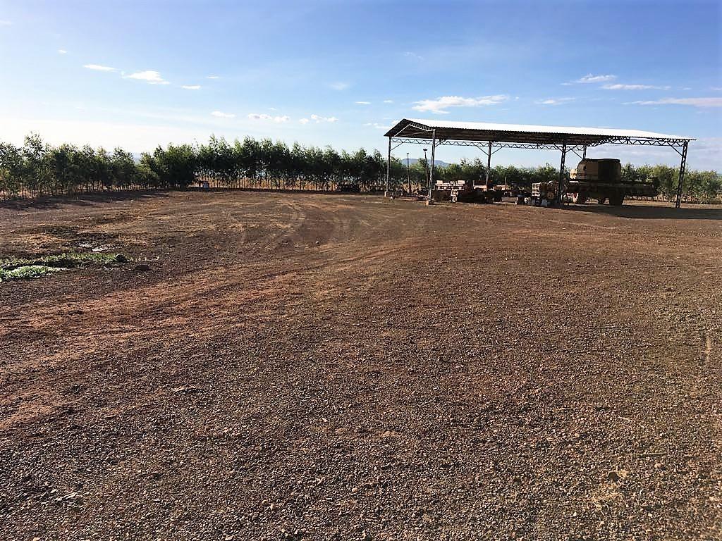 fazenda porto nacional/to 726 hectares - fa0051