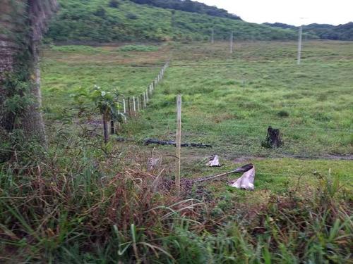 fazenda / região iguape / 90% aberta / ref.: 0001