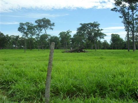 fazenda rural à venda, bairro inválido, cidade inexistente - fa0074. - fa0074