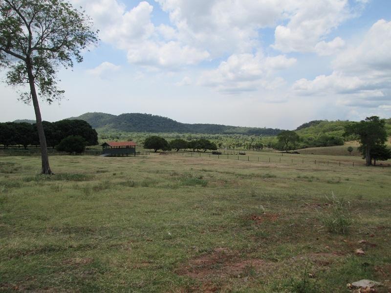 fazenda rural à venda, em corumbá-ms - fa0209