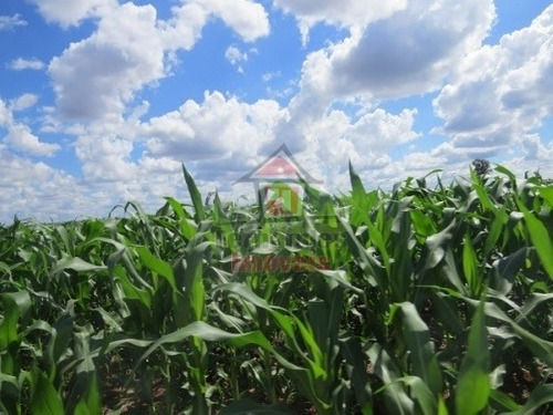 fazenda rural à venda em  dourados - fa0138. - fa0138