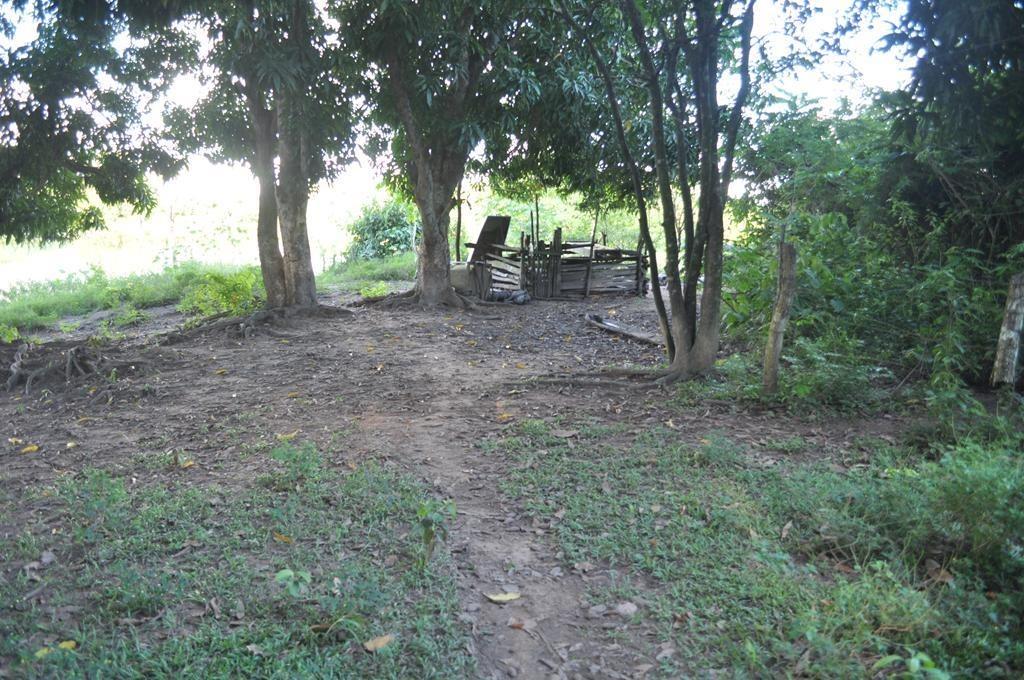 fazenda rural à venda, jardim cuiabá, cuiabá. - fa0117