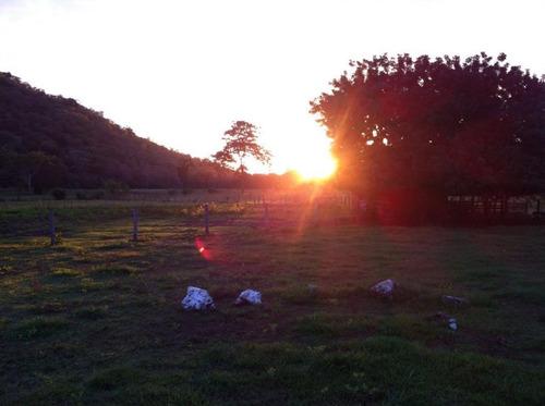 fazenda rural à venda, zona rural, cáceres - mt. - fa0220