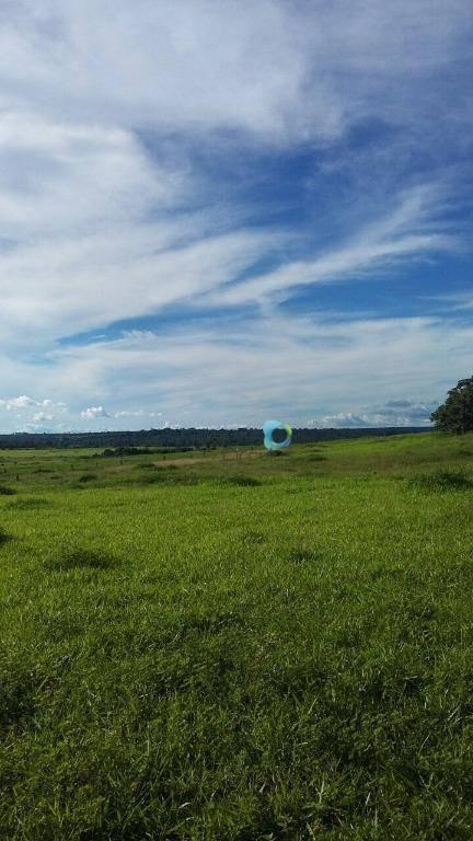 fazenda rural à venda, zona rural, canabrava do norte. - fa0020