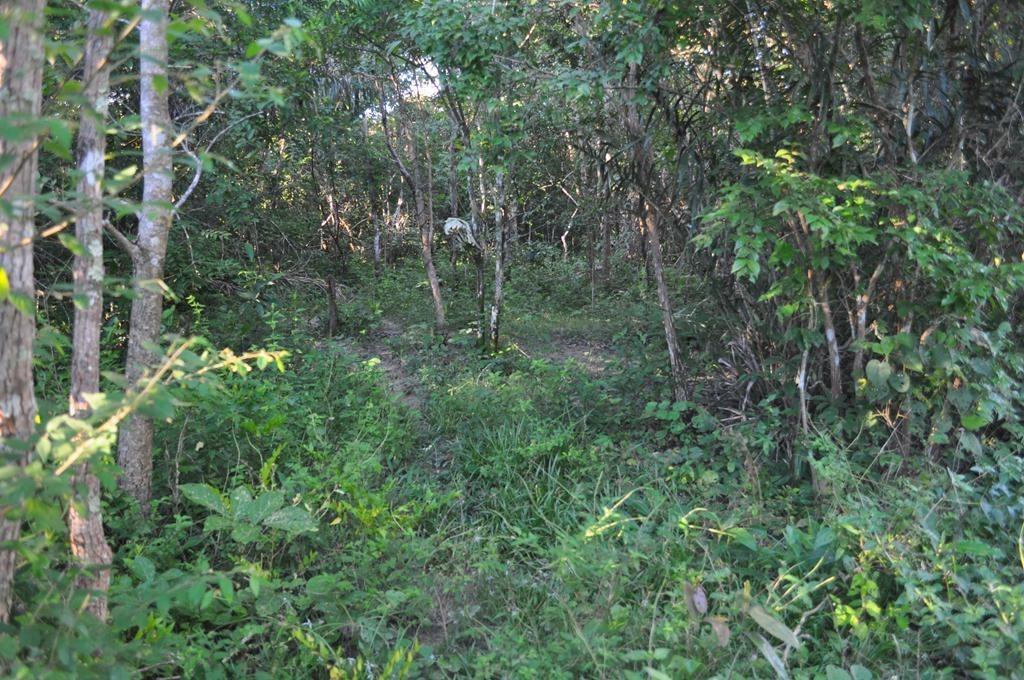 fazenda  rural à venda, zona rural, chapada dos guimarães. - fa0120