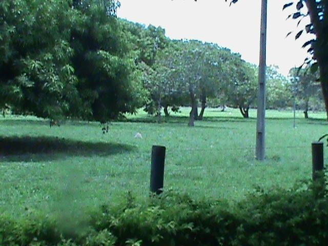 fazenda  rural à venda, zona rural, cocalinho. - fa0119