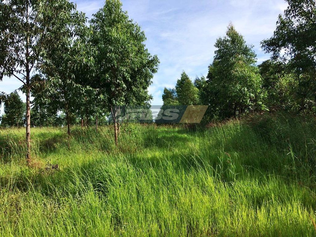 fazenda à venda, 10160000 m² por r$ 3.900.000 - campos belos/go - fa0050