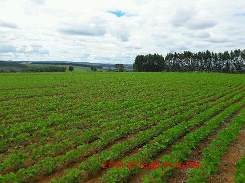 fazenda à venda, 1258400 m² por r$ 3.500.000 - centro - araxá/mg - fa0159