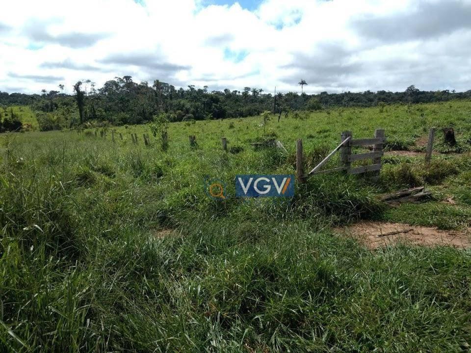 fazenda à venda, 206885 m² por r$ 15.000.000,00 - zona rural - pimenta bueno/ro - fa0001